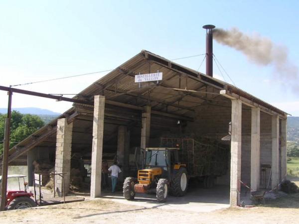 distillerie du vallon1